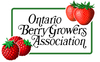 Ontario Berry Growers Association Logo